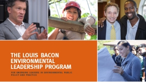 Louis Bacon Fellowship
