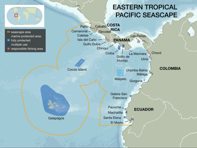 The Eastern Tropical Pacific Seascape Project is a partnership between the governments of Columbia, Costa Rica, Ecuador, and Panama, along with Conservation International, the UNESCO World Heritage Center, and the UN Foundation all working together to establish an ecologically representative network of marine protected areas from Costa Rica to Ecuador that protects all major habitats and important species in the region.