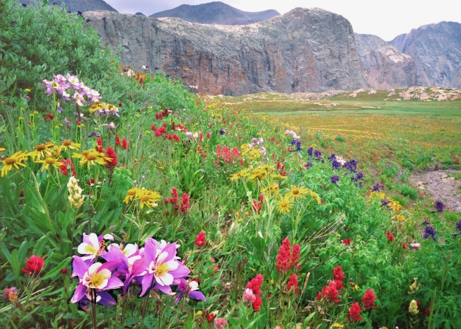 The mission of the Colorado Coalition of Land Trusts is to promote and support land conservation excellence in Colorado.